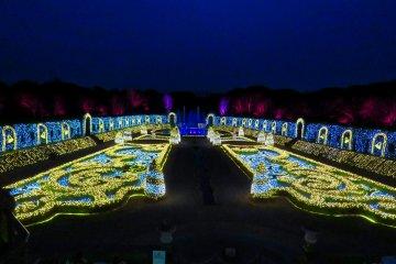 Дворцовое световое шоу