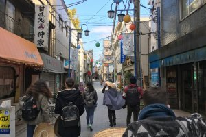 Setting out on a Tokaido Trail adventure