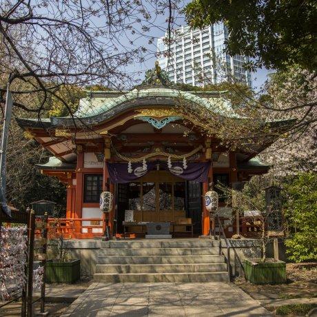Top 8 Historic Spots in Shiba