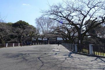 สวนคิทะโนะมะรุ โตเกียว