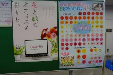 โปสเยอร์ในห้องประมูลดอกไม้