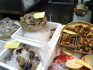 หอยทะเลนานาชนิด
