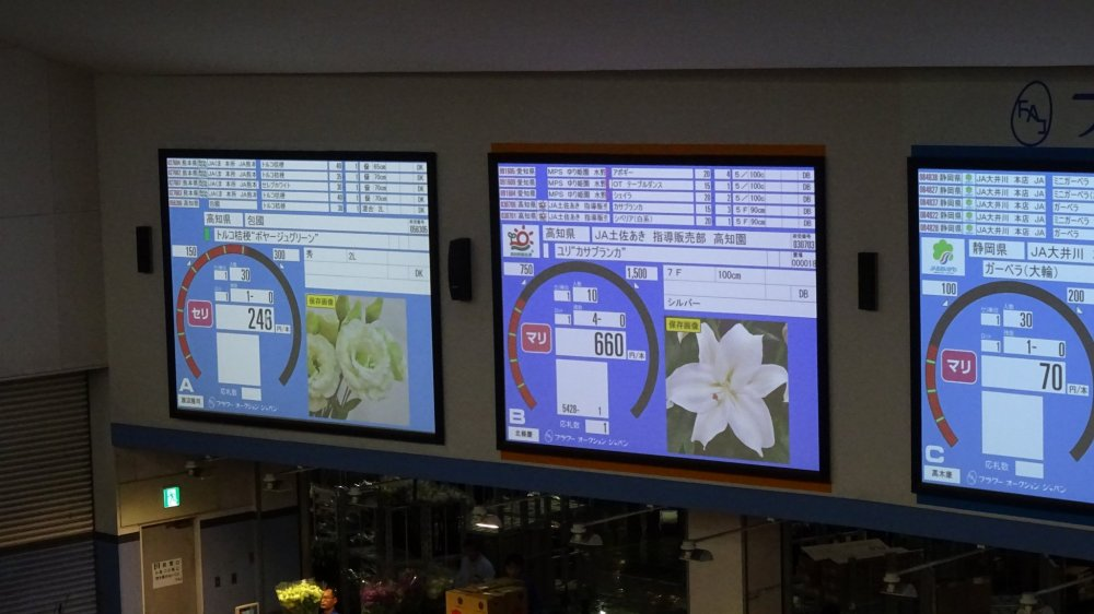 ห้องประมูลแบบเงียบใช้กดในคอมพิวเตอร์ มีจอภาพขนาดอยู่หลายจอให้ข้อมูลของดอกไม้ที่กำลังประมูล