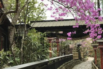 Mount Mitake and Mitake Shrine