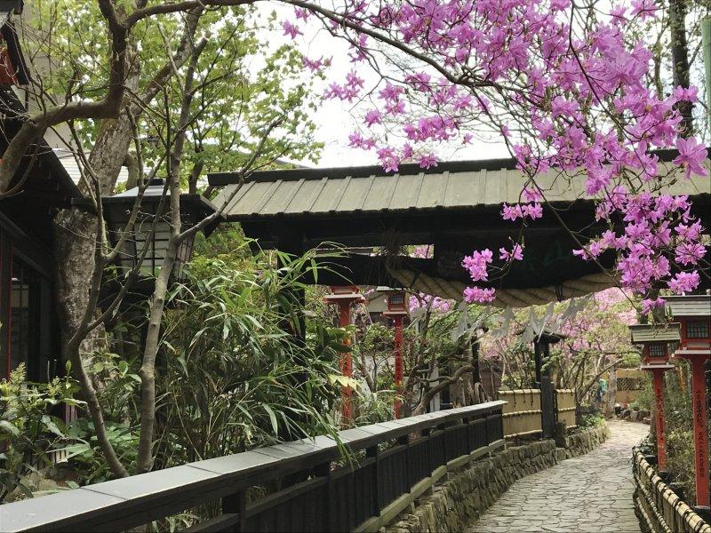 Spring in Mitake Village