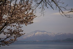 Cherry blossoms create a lovely frame for Lake Tazawa