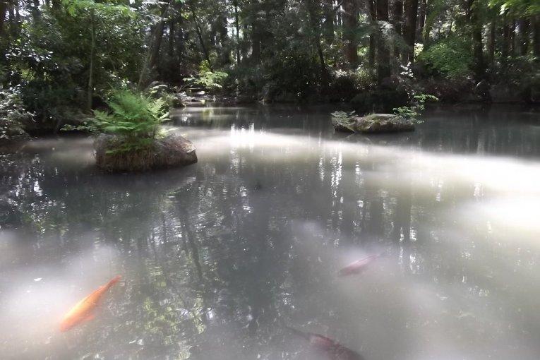 El santuario Hotaka-jinja en Azumino