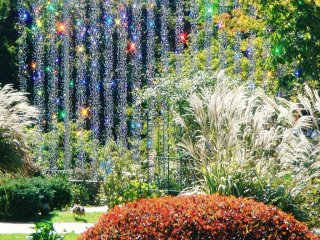 One of the seasonal glass outdoor exhibits