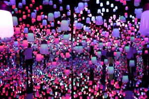 Forest of Lamps transports visitors to a different world
