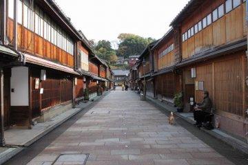 히가시 오차야의 중앙 도로