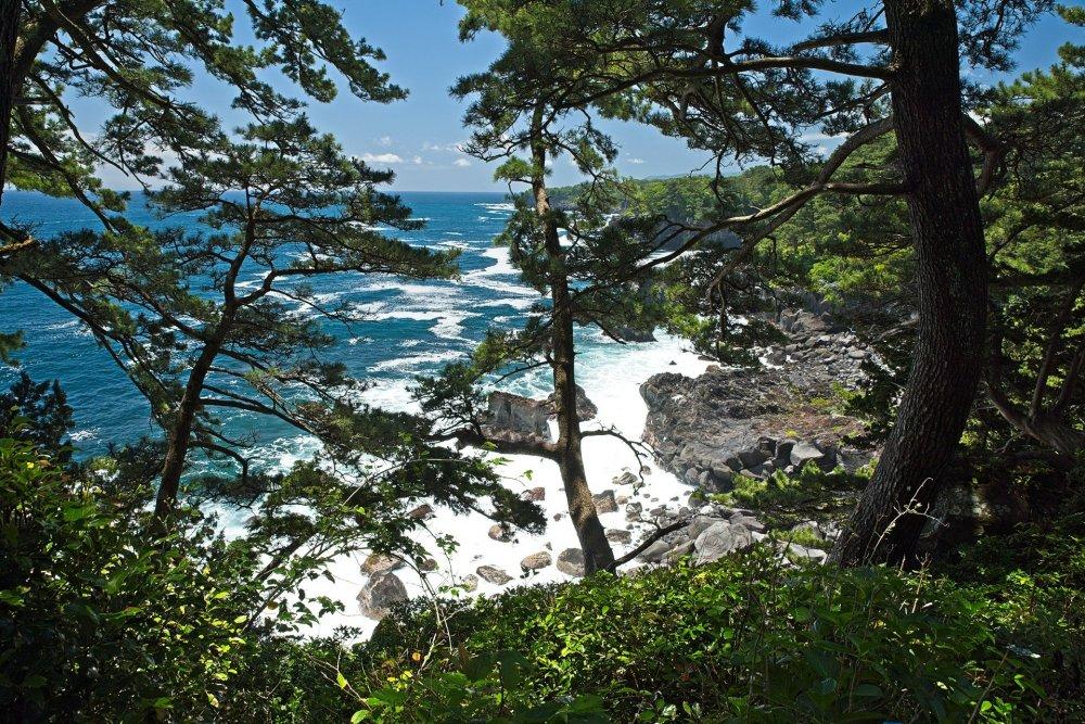 A typical Izu coastal view.