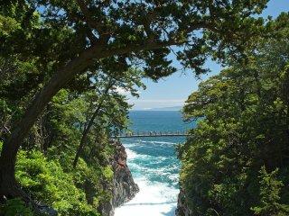 The famous Jogasaki suspension bridge.