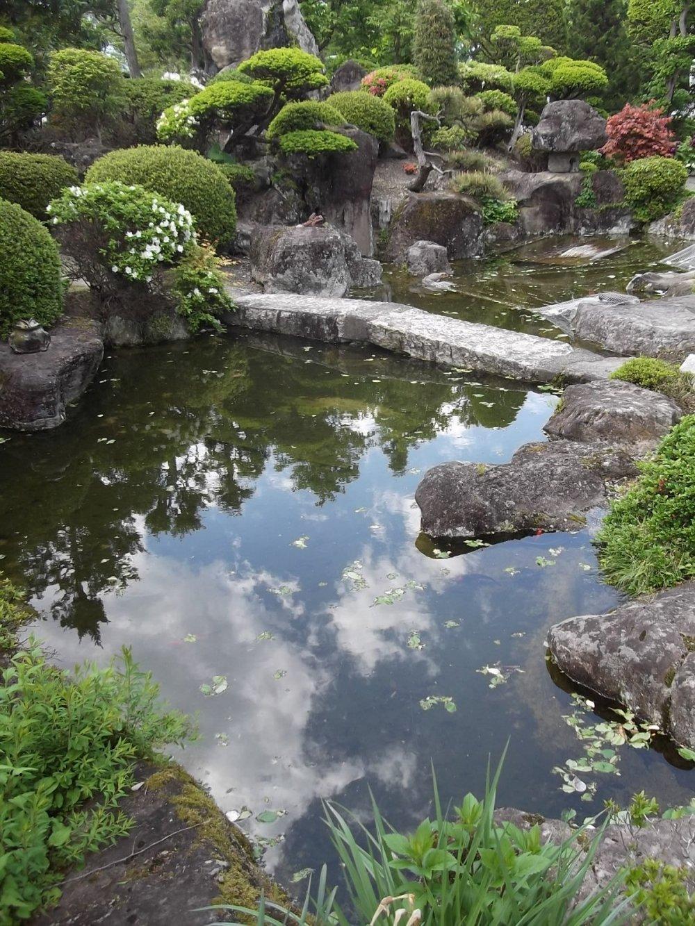 The carefully tended garden