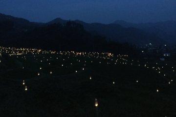 테라사카 반딧불 축제