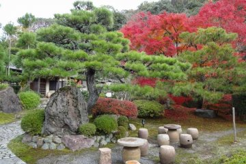 <p>Gorgeous sitting area to view koyou</p>