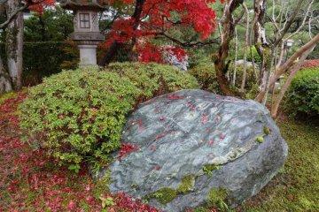 <p>A wonderful rainy fall day</p>