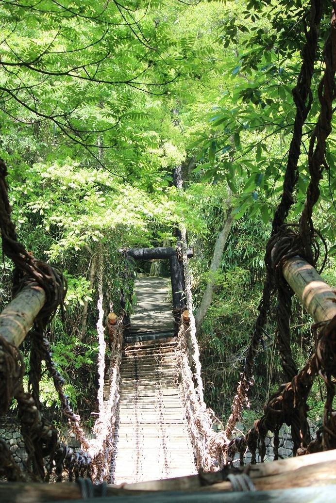 A bridge made of vines at Shikoku Mura