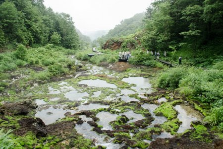 Công viên rêu Chatsubomi-goke