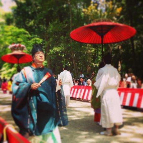 Aoi Matsuri in Photos