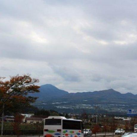 群馬県(군마현)沼田(누마타)사과마을