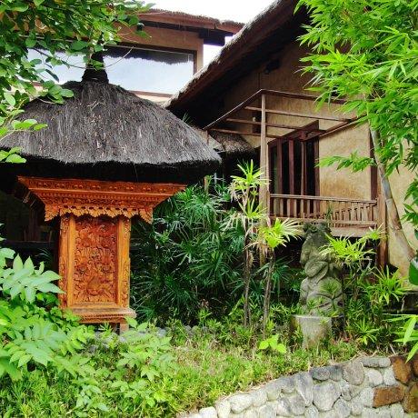 Lotus: Kafe Asia