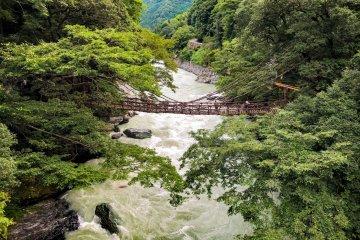 The Kazurabashi, or vine bridge