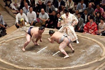 Tachiai, the moment when wrestlers clash