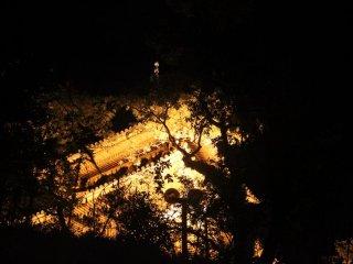 Thời điểm tuyệt vời nhất để ngắm đom đóm là vào khoảng 7:30 pm. Công viên đóng cửa lúc 9 pm.