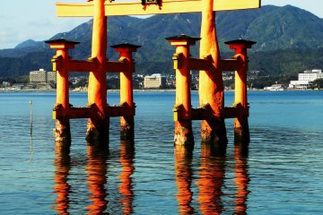 The torii gate is said to 'float' but the reflection on the water in this shot reminded me that the gate's 'roots' were actually quite deep.