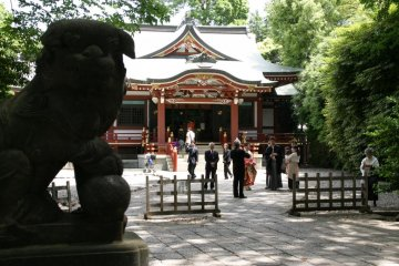 Pause for breath and take in the serenity of Hachiman shrine.