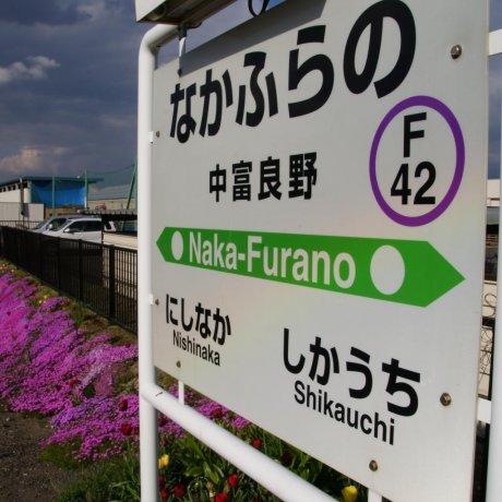 Japan Rail in Furano