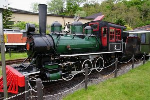 Ride the steam train around the park