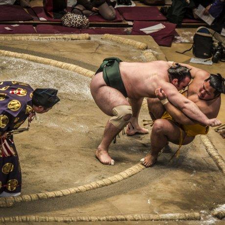Giải Sumo Fukuoka mở rộng