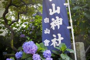 The entrance to the Hakusan Shrine
