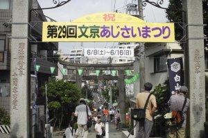 Banner of the festival
