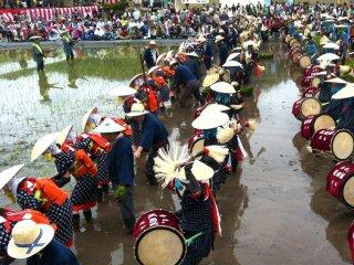 O processo de plantar arroz é reproduzido com som e dança usando percussão, flautas e pequenos gongos
