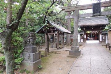 The torii gate of Hikawa Shrine