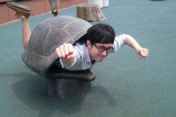 거북이가 되어보세요^.^www 재미있는 포토 구역도 있습니다.