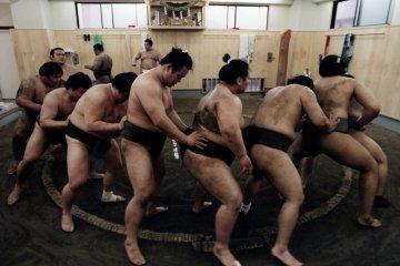 Sumo Stables in Tokyo