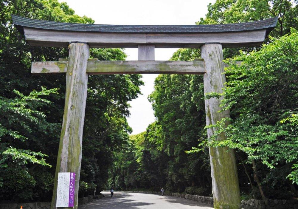 Cổng torii cao một cách ấn tượng được làm từ gỗ bách Nhật.
