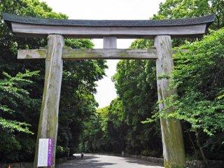 ประตูโทริที่สูงมากๆ ทำจากไม้สนไซปรัสญี่ปุ่น