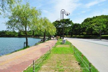 Công viên Ohari ở Fukuoka