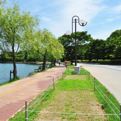 Ohori Park in Fukuoka