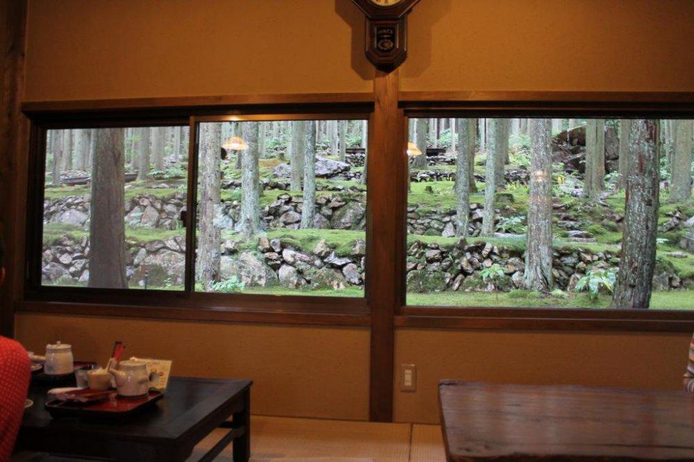 카페 창문 너머로는 깊고 신비스러운 분위기의 풍경이 펼쳐져 있다.