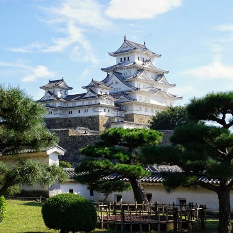 Come for the Castle, Stay for the Sake: Himeji