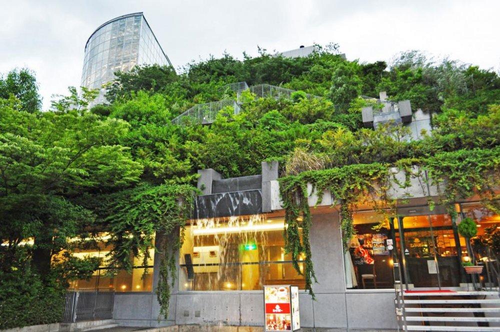 A Sundown Stroll in Tenjin Fukuoka Japan Travel Japan Tourism