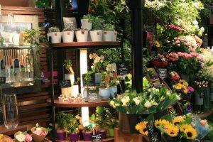 Cửa hàng hoa Aoyama ở Takadanobaba.