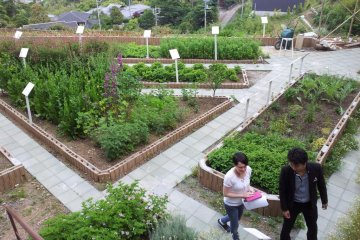 """The herb and vegetable garden puts the """"farm"""" in Farm Takanawa Club"""