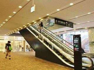 지하 1층 (B1)