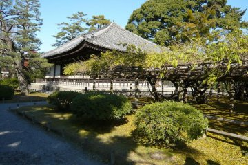Temple grounds at Byodoin
